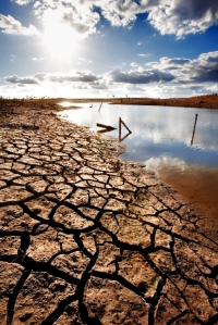 Lake bed drying up due to drought